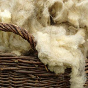 Шерсть овцы: технология производства, оценка качества и советы начинающим (105 фото)